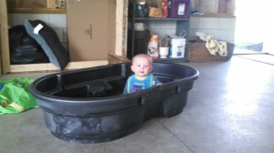 Daddy bought me a pool for a summer!!?!